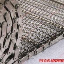 临江市链条网带,扁丝链条传动网带,冷冻隧道链条网带