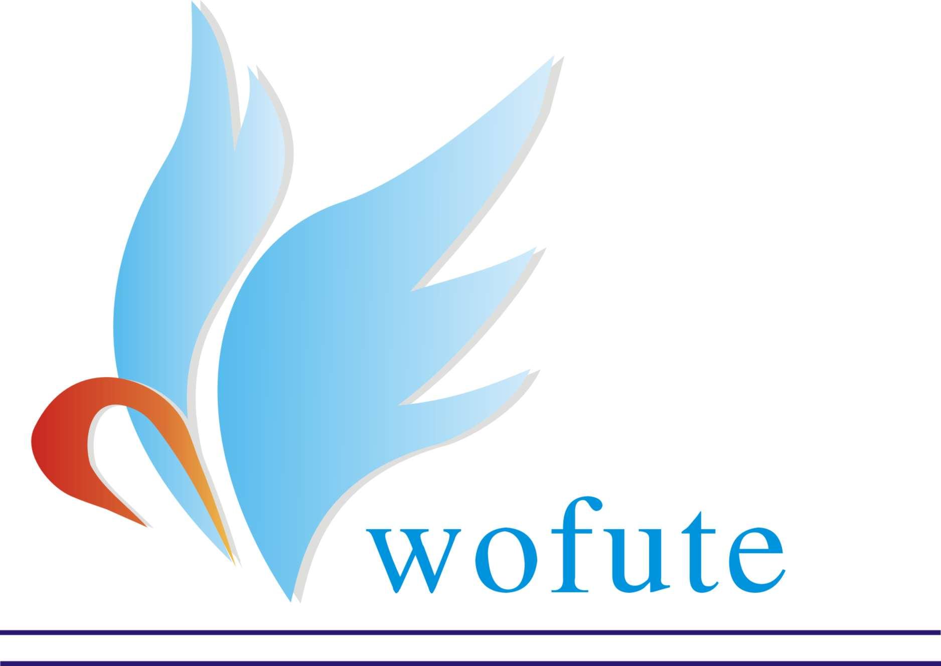 沃芙特塑胶科技(天津)有限公司