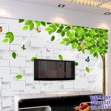 装饰背景墙加盟池州背景墙加盟诺欧电子科技