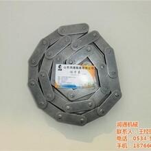 输送链条_润通机械_2042不锈钢输送链条图片