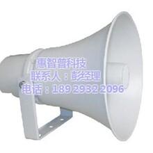 号角扬声器_功能可按需定制图_宣传喊话号角扬声器箱图片