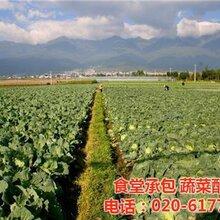 炭步鎮蔬菜配送,康峰配送公司,廣州醫院蔬菜配送圖片