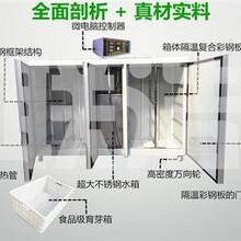 金華自動豆芽機小型豆芽機全自動豆芽機圖片圖片