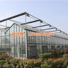 温室蔬菜大棚造价_威海温室_温室连体大棚