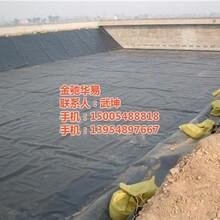 沼气池防渗膜土工膜图沼气池防渗膜厂家