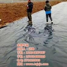 沼气池防渗膜,土工膜,沼气池防渗膜厂家