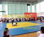柔道垫,活力体育比赛专用柔道垫,训练比赛专用柔道垫子价格