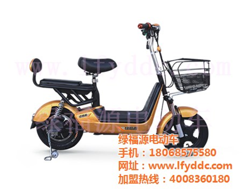 绿福源车业在线咨询_广西二轮电动车_折叠二轮电动车