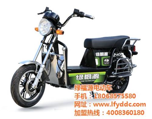 西藏二轮电动车,绿福源电动车加盟,轻便二轮电动车