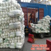 黃埔區有機蔬菜配送康峰種植基地圖餐飲有機蔬菜配送圖片