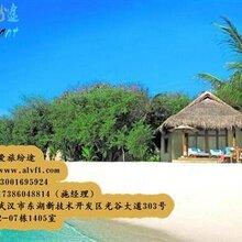 旅游公司爱旅纷途旅游网招商加盟怎么加盟旅游公司