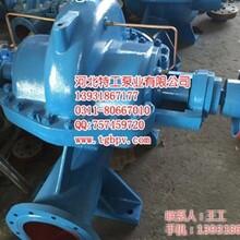 单级耐磨中开泵KQSN300N4559天津中开泵,化工泵
