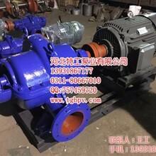 抽水泵安徽离心泵蜗壳泵KQSN300N3816