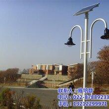 天津太阳能庭院灯知名厂家恒利达太阳能庭院灯标配图片