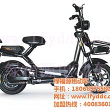 二轮电动车价格及图片,二轮电动车,绿福源电动车加盟