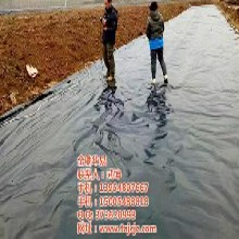土工膜在线咨询,垃圾场填埋专用膜,出售垃圾场填埋专用膜