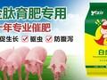 猪用增肥,猪催肥促长添加剂,怎样喂猪长得快图片