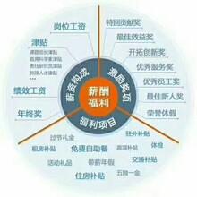 青海劳联劳务派遣代发工资社保代理招聘服务l劳联工伤意外险