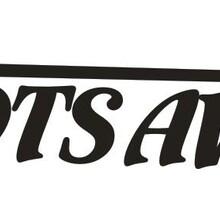 TDTSAVC(迪特斯)3V公共广播厂家