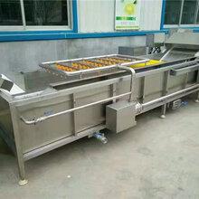 黑龙江苹果清洗机苹果清洗流水线