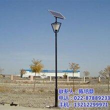 黑河太阳能庭院灯_知名厂家恒利达_安装太阳能庭院灯图片