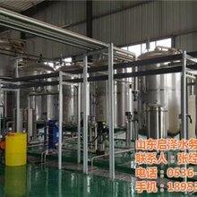 泰安反渗透膜过滤系统启泽水务图反渗透膜过滤系统价格