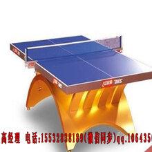 湘潭分体式乒乓球台品质有保障大彩虹乒乓球桌价格公道