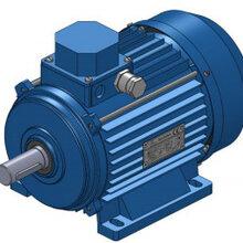 ELMOT-SCHAFER电机TEQ2E100L4C