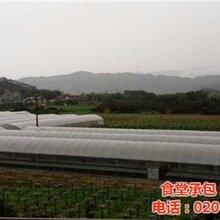 康峰准时送货图医院农产品配送公司夏港街道农产品配送图片