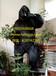 站立大黑猩猩,金剛Q-101