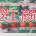 新疆烏魯木齊其草莓苗培育基地,紅顏草莓苗批發價格