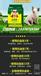 仔豬價格豬吃什么長的快日長三斤添加劑配方誼鑫白金肽