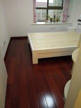 韵之馨实木地板(番龙眼浅红色)图片