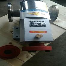 定制河南鄭州-3RP6/0.6面水泵-不銹鋼凸輪轉子泵-萬用泵圖片