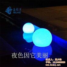 路灯灯罩圆球灯广安圆球灯海粒子图片