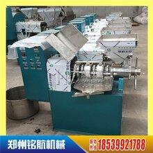 铭航机械在线咨询榨油机小型螺旋榨油机图片