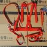 浙江电力安全带全身五点式安全带加厚锦纶双背安全带石家庄区域新品电力安全带