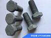 江蘇批發熱鍍鋅螺絲現貨鑄頂緊固件河北生產廠家