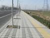 富崇水泥制品价格合理的路侧石供应-惠州侧排水板批发
