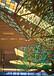優惠的定制裝飾藝術燈具廠家直銷_中山優質的定制裝飾藝術燈具哪里買