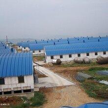 永州拱型鋼屋頂優質拱型鋼屋頂供應圖片