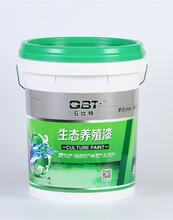 台湾丘比特养殖池漆供应厂家_哪儿有卖耐用的台湾丘比特养殖池漆图片