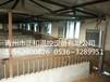 供應山東養殖散熱器——養殖散熱器價格