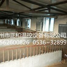 供應山東養殖散熱器——養殖散熱器價格圖片