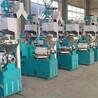 上海螺旋榨油机生产厂家直销玉米胚芽榨油机