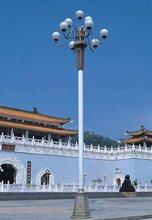 晋中公园景观灯恒利达专业制造公园景观灯定做图片