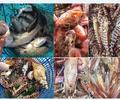 澳洲海鲜进口清关的基本流程