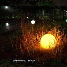 球形灯_海粒子_围墙球形灯图片