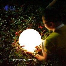 海粒子图户外路灯球形灯球形灯图片