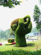 綠色作為植物最普遍的顏色,是一種中間色彩圖片